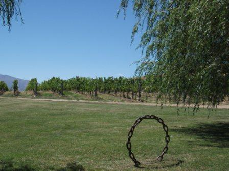 Northburn Vineyard
